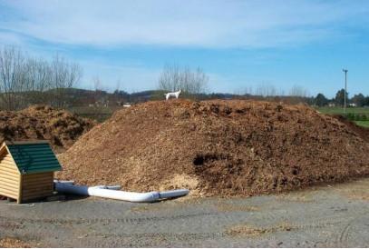 ASP Composting 1