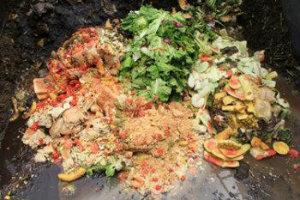 Food Waste2 newsletter